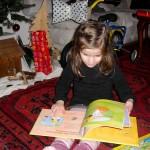 Das Prinzessinnenbuch vom Christkind